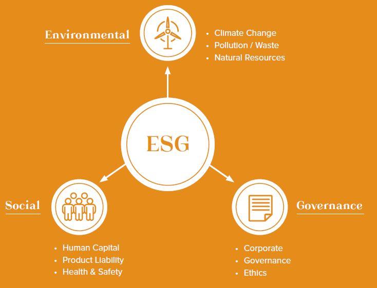 ESG Strategy